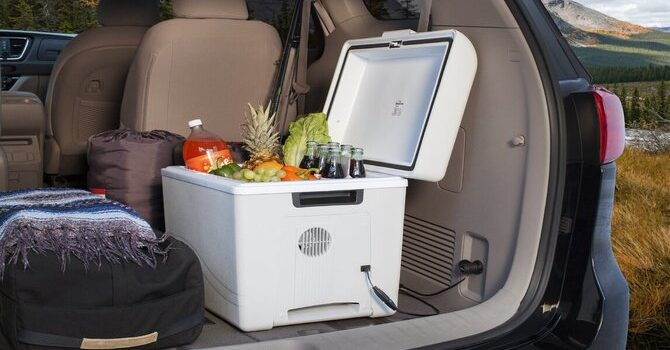 Best Portable Electric Cooler